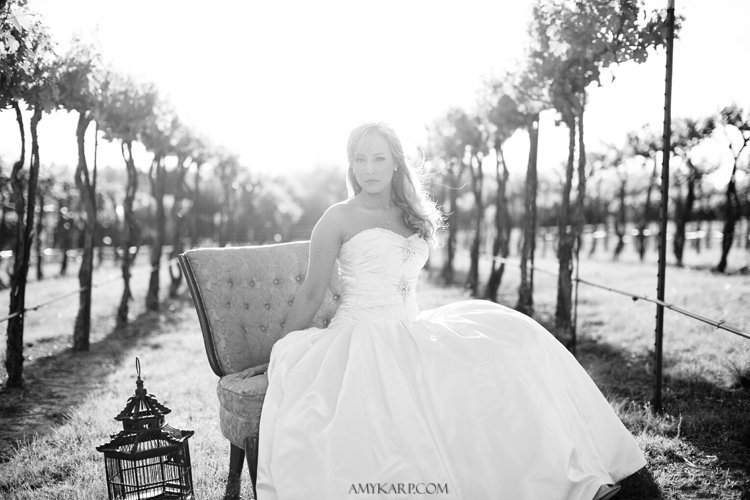 dallas bridal portraits of kelley by dallas wedding photographer amy karp (16)
