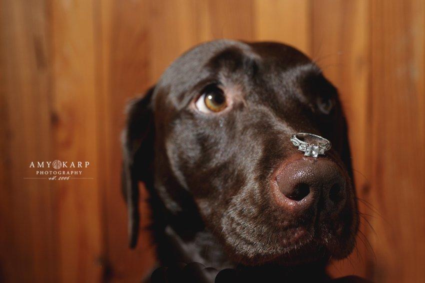 dallas-wedding-photographer-longhorn-ranch-wedding-055