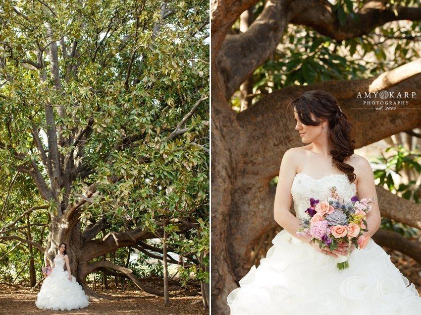 dallas-wedding-photographer-bridal-portraits-amber-09
