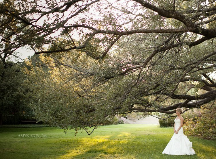 Dallas Wedding Photographer Amy Karp  Fort Worth Botanical Gardens Emily 2