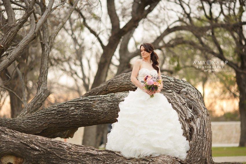 dallas-wedding-photographer-bridal-portraits-amber-15