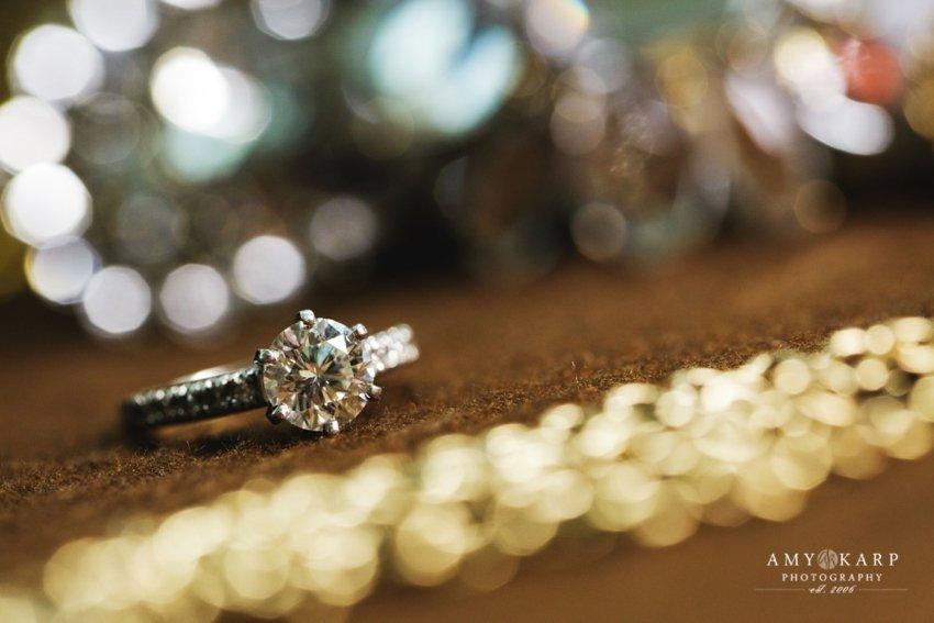 dallas-arboretum-wedding-amykarp-jessica-andrew-01