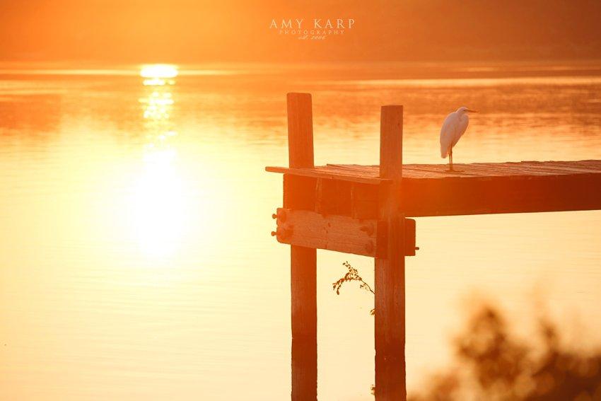 summer-kyle-dallas-wedding-photography-white-rock-lake-01